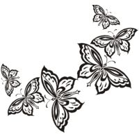 Butterflies in a row Thumbnail