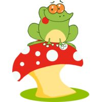 green frog sitting on toadstool red white Thumbnail