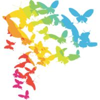 Colourful butterflies Thumbnail
